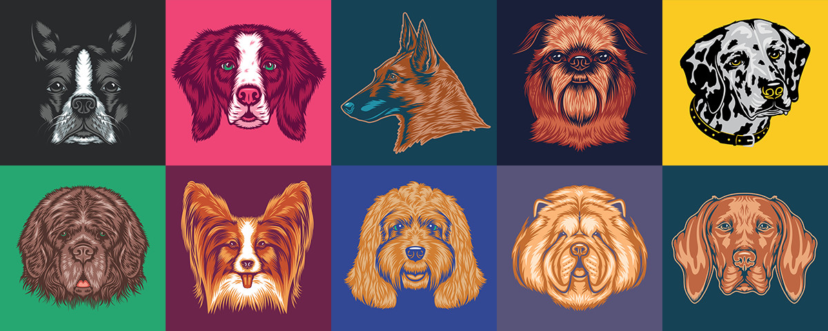 Dog Illustrations by Lance LeBlanc